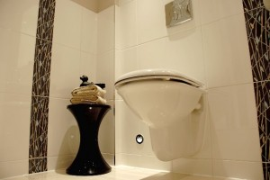 Modern Wall Hung Toilet