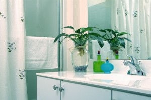 Soothing Spa Bathroom Colors